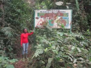panneau annonçant la forêt