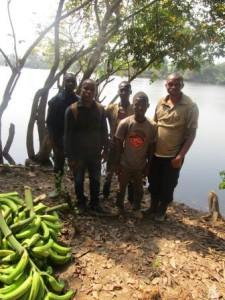 limite Ouest de la forêt : chargement de banane sort de la forêt par le canal du fleuve